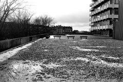 Bancs de parc noirs et blancs photo libre de droits
