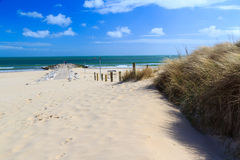 Bancs de sable Dorset Photo stock