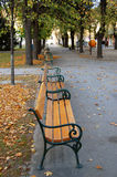 Bancs de stationnement, automne Image libre de droits