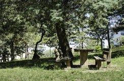 Bancs en bois et une table dans les bois Photo stock
