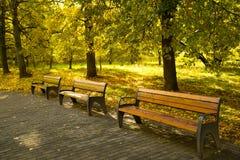 Bancs en bois sur la voie en parc de matin en automne images stock