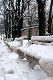 Bancs en parc, couvert de neige Vue verticale Photographie stock libre de droits