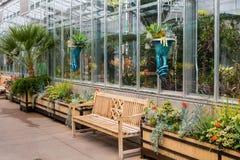 Bancs vides en bois par la serre chaude dans le jardin Photo libre de droits