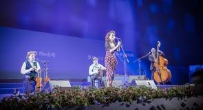 Band De Dannan im Konzert Lizenzfreies Stockbild
