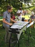 Band för Jazzmusik på McLean trädgårdar Arkivfoto