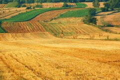 Band fields in east Poland Royalty Free Stock Images