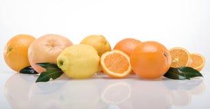 Band of fruits_02. Band of fruits on white background royalty free stock image
