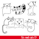 The band of six funkey cats. Isolated over white Stock Photo