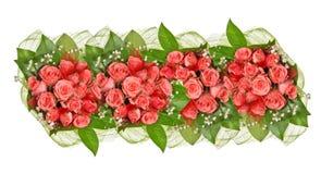 Band van roze roze die bloemen op wit wordt geïsoleerd Royalty-vrije Stock Foto's
