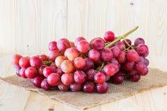 banda ścinku zawierać ścieżka winogron Obraz Royalty Free