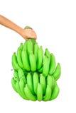 banda bananów występować samodzielnie Zdjęcia Stock