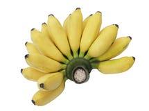 banda banan Zdjęcie Stock