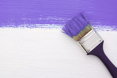 Banda di pittura porpora con un pennello su bianco Immagini Stock Libere da Diritti