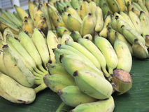 banda dojrzała, banan Fotografia Royalty Free