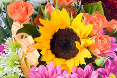 banda kwiat Zdjęcie Stock