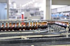 Banda transportadora de una cervecería - botellas de cerveza en la producción y el bott foto de archivo libre de regalías