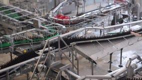 Banda transportadora de una cervecería - botellas de cerveza en la producción y el embotellamiento almacen de video