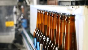 Banda transportadora de una cervecería - botellas de cerveza en la producción y el embotellamiento Botellas de cerveza que mueven almacen de video