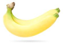 banda występować samodzielnie banan Obraz Royalty Free