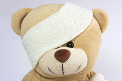 Bandaged bear head and eye royalty free stock photo