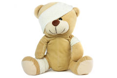Bandaged bear head and eye Royalty Free Stock Photo