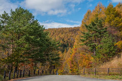Bandai Azuma skyline road trip in autumn season. Bandai Azuma skyline road trip in autumn season, Fukushima, Japan Stock Image