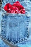 Bandanna in pocket royalty free stock photo