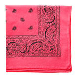 Bandanna raspberry Royalty Free Stock Photos