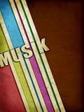Bandas de la música del Grunge imagen de archivo libre de regalías
