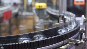 Bande de conveyeur avec les bouteilles en verre processus de fabrication des boissons alcoolisées clips vidéos