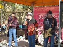 Bande de jazz au festival de fleur de cerise Images libres de droits