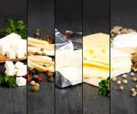 Bande del preparato del formaggio Immagine Stock