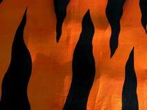 Bande della tigre Fotografia Stock
