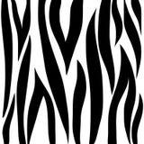 Bande della zebra Fotografia Stock Libera da Diritti
