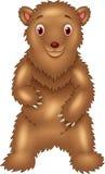 Bande dessinée Big Bear se tenant avec le fond transparent Image libre de droits