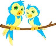 bande dessinée d'oiseaux de couples Photo libre de droits