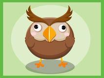 Bande dessinée de hibou Caractères drôles de dessin animé et d'animal de vecteur Images libres de droits