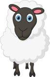 Bande dessinée de moutons Photo stock