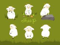 Bande dessinée de moutons Image stock