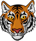 Bande dessinée de Tiger Head Mascot Team Sport Photographie stock libre de droits