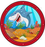 Bande dessinée fâchée de requin images libres de droits