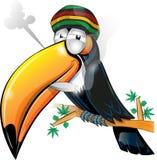 Bande dessinée jamaïcaine de toucan Images stock