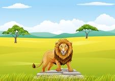 Bande dessinée Lion Mascot Images stock