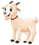 Bande dessinée mignonne de chèvre illustration libre de droits