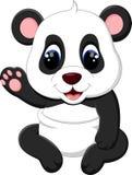 Bande dessinée mignonne de panda de bébé Photographie stock