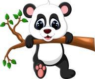 Bande dessinée mignonne de panda de bébé Image libre de droits