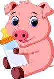 Bande dessinée mignonne de porc de bébé Photos libres de droits