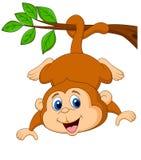 Bande dessinée mignonne de singe accrochant sur une branche d'arbre Image stock