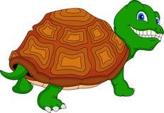 Bande dessinée mignonne de tortue verte Photos stock