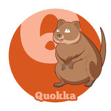 Bande dessinée Quokka d'ABC Photos stock